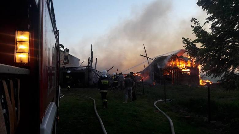 W piątek (19 maja) około godz. 20.30 Ochotnicza Straż Pożarna w Potęgowie otrzymała zgłoszenie o pożarze zabudowań gospodarczych w Runowie. Zapaliła