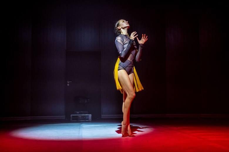 <strong>TANIEC:</strong><br /> <br /> <strong>Małgorzata Mielech</strong><br /> Tancerka, choreografka, a także nauczycielka tańca. Niezwykła osobowość w sztuce tańca, reprezentująca ją nie tylko w Poznaniu i Wielkopolsce, ale również w Polsce i na świecie.