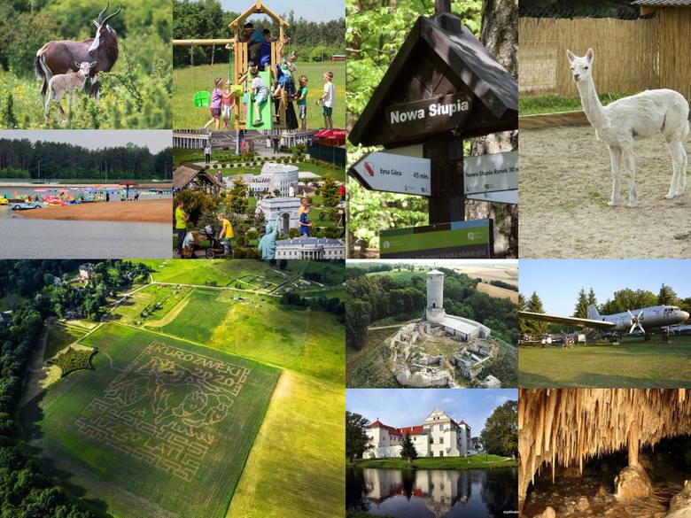 Szukasz pomysłu na weekendową wycieczkę z dziećmi? Region świętokrzyski oferuje wiele atrakcji, a w niewielkiej odległości od Kielc znajdziemy ciekawe