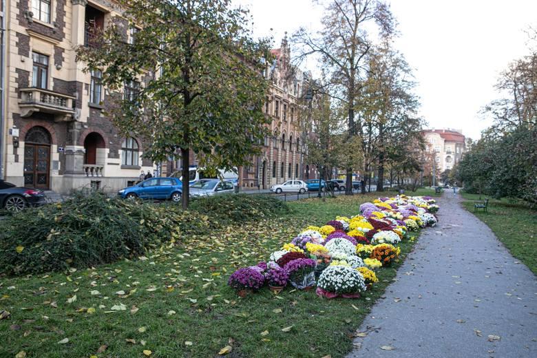 Skwer przed krakowską siedzibą PiS często jest miejscem różnych demonstracji. Od teraz będzie nosił nazwę Praw Kobiet