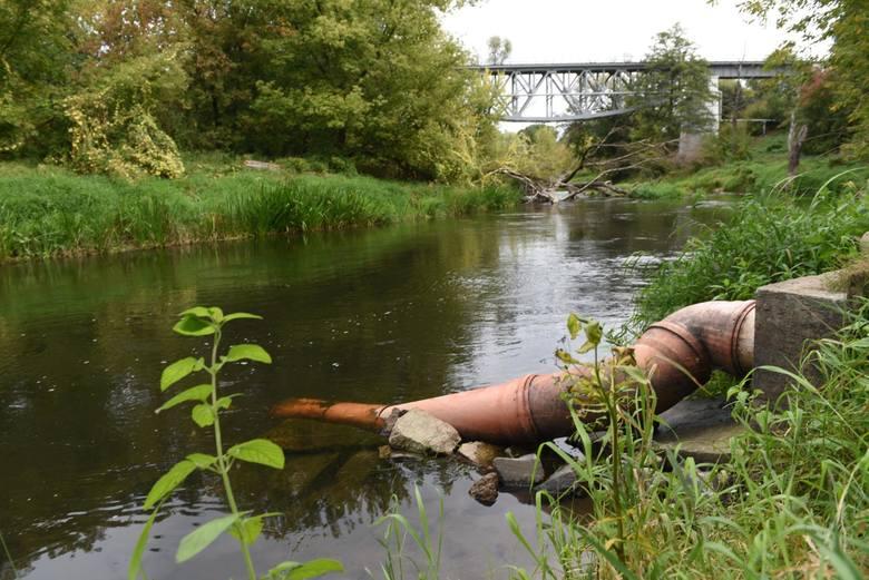 Towarzystwo Przyjaciół Rzeki Drwęcy alarmuje o odprowadzaniu ścieków bezpośrednio w obszarze rezerwatu.Miłośnicy Drwęcy, okoliczni mieszkańcy i kajakarze