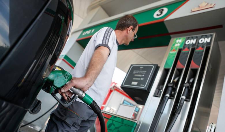 Jak informuje BM Reflex, firma zajmująca się analizą rynku paliw, średnia cena benzyny Pb 95 na Opolszczyźnie wynosi 4,06 zł, Pb 98 - 4,39 zł, ON - 4,13