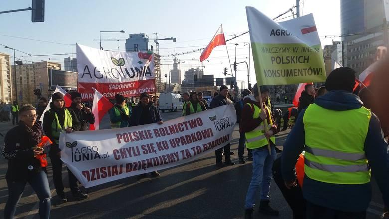 Protest rolników w Warszawie [3.04.2019]. W manifestacji około 30 rolników ze Świętokrzyskiego