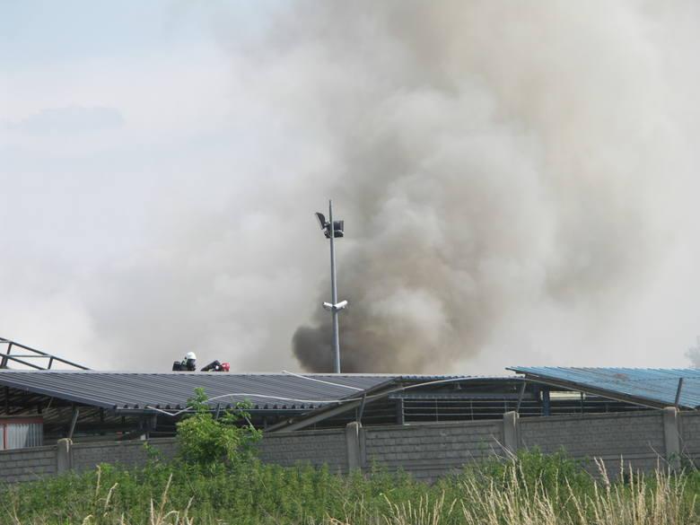 W akcji gaśniczej bierze udział 6 zastępów straży pożarnej.