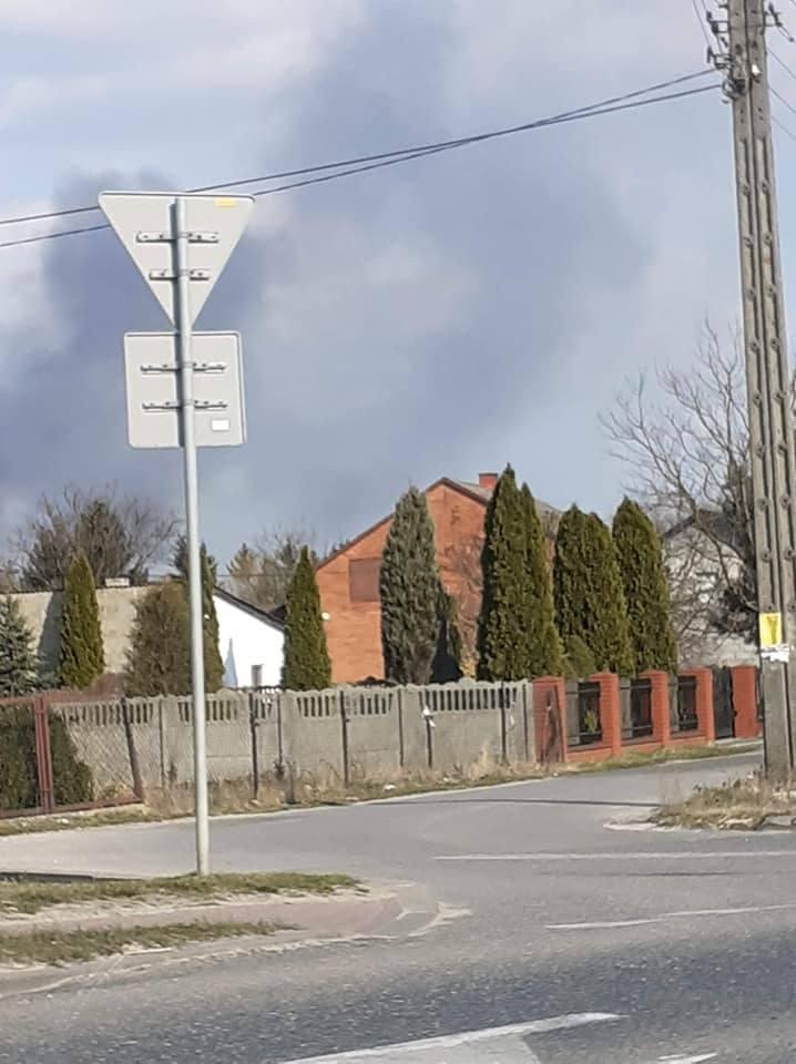 Osiem hektarów trzcin spaliło się w Kłudnie.