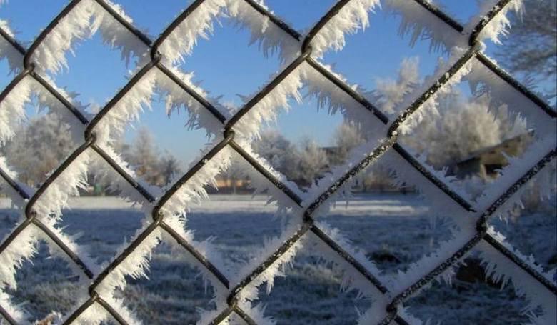 Pogoda 2018 na zimę. Zima 2018/19: pogoda - długoterminowa prognoza. Kiedy będzie zima 2018/2019: Kiedy spadnie śnieg? [PROGNOZA POGODY] 18.10.2018