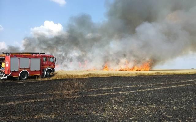 Jak zwykle strażacy o tej porze roku mają wiele wyjazdów związanych w wypalaniem traw.