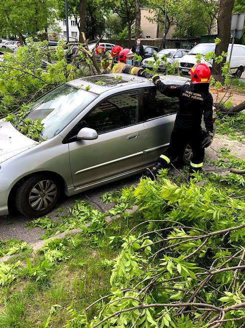Gruby konar spadł w poniedziałek (18 maja) na samochód  pani Katarzyny z Łodzi. Kilka minut wcześniej łodzianka zaparkowała go  przy ul. Poznańskiej