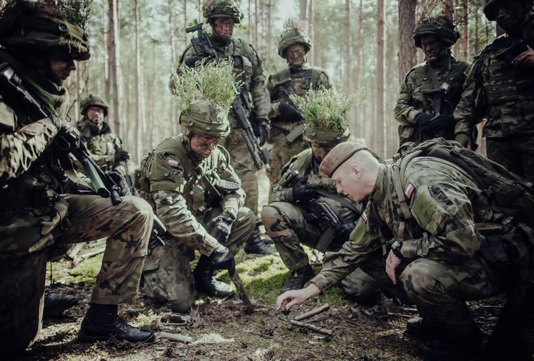 W trakcie zajęć Terytorialsi wykorzystywali Laserowy System Strzelań, który znacząco podnosi realizm działań taktycznych.
