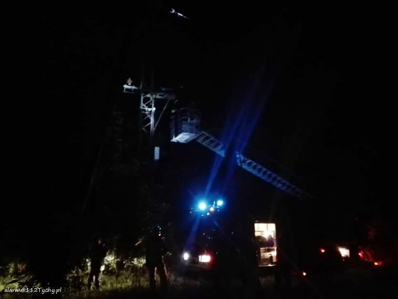 Bociany zostały porażone prądem w Imielinie. Nie żyją trzy ptaki ZDJĘCIA