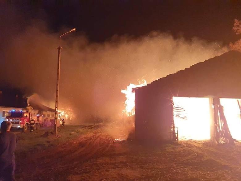 Ten pożar to było piekło. W Dąbrowie Łużyckiej spłonęły budynki gospodarcze. Straty to 500 tys. zł. Złapano podejrzanego o podpalenie