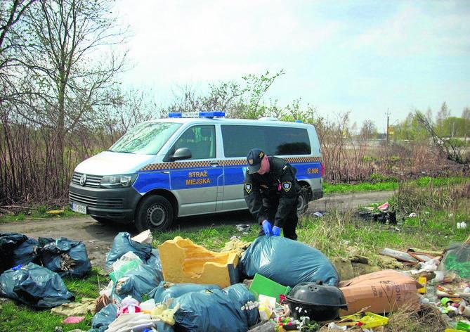 Śmieci w Koszalinie. Problem z dzikimi wysypiskami [ZDJĘCIA]