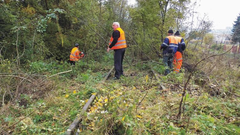 Strażacy - ochotnicy, uczniowie, społecznicy oraz służby komunalne biorą udział w I Siekierezadzie Bieszczadzkiej.  Celem akcji jest oczyszczenie torów