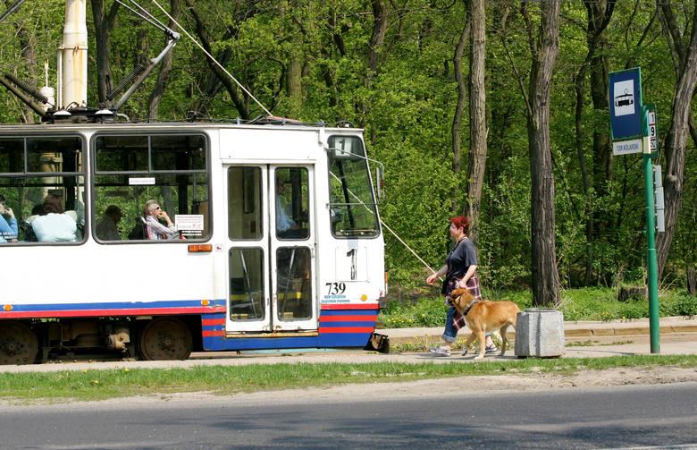 """To w tramwaju tej linii dwóch pijanych mężczyzn zastraszyło pasażerów i poturbowało jednego z nich. Motornicza """"jedynki"""", mimo łączności z dyspozytorem,"""