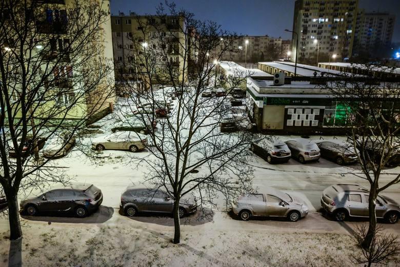 Pierwszy dzień zimy 2017. Rusza zima! [Goodle dało Doodle - 21.12.2017]