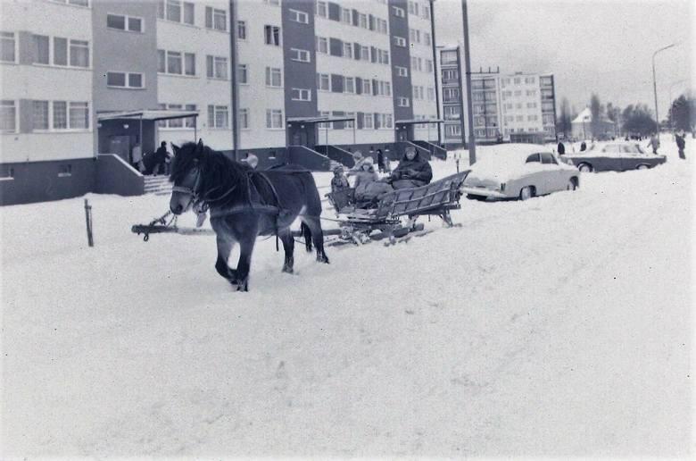Konny zaprzęg na Zatorzu – styczeń 1979.
