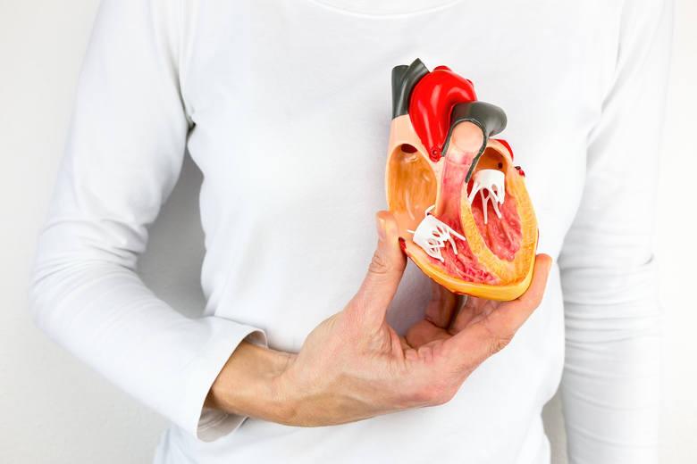 Miażdżyca dotyczy naczyń tętniczych, których funkcją jest doprowadzanie krwi nasyconej tlenem i składnikami odżywczymi do wszystkich komórek całego ciała.