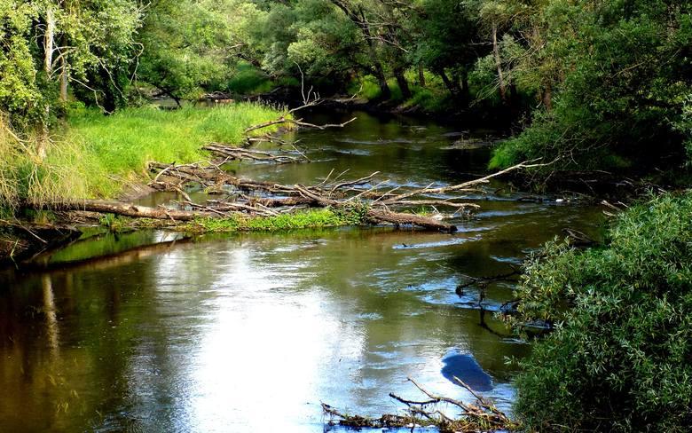 lubuskie jeziora, lubuskie rzeki, wypoczynek w lubuskiem, lubuskie szlaki, lubuskie szlaku turystyczne
