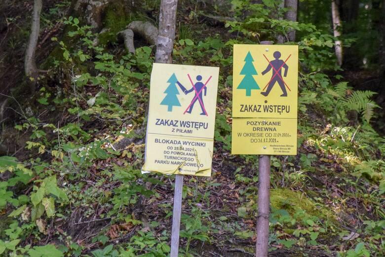Blokada lasu prowadzona jest od 25 kwietnia, przy drodze, pomiędzy Arłamowem i Makową.