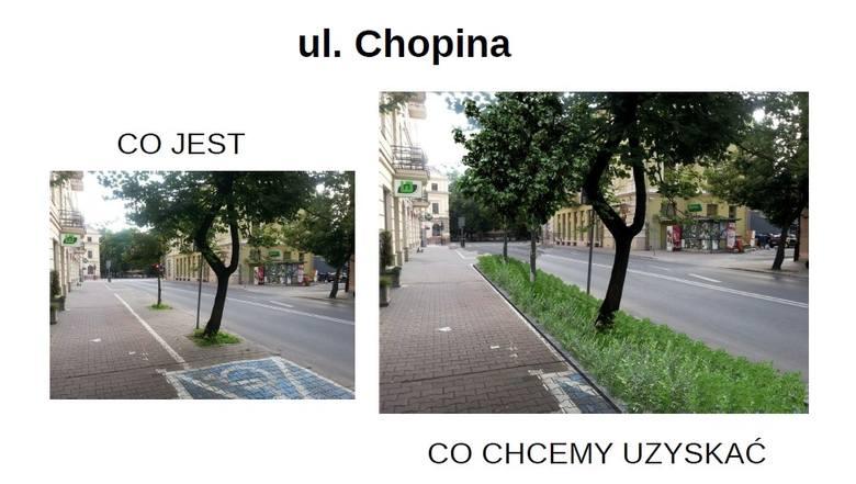 W Lublinie posadzą nowe drzewa i krzewy w centrum, ale kosztem miejsc parkingowych