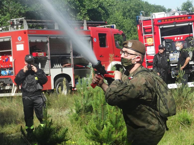 Terytorialsi uczyli się, jak technicznie sobie poradzić z gaszeniem pożarów w lasach.