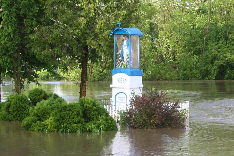 W Izbiskach w powiecie mieleckim woda wdarła się do domów. Konieczna była ewakuacja mieszkańców. Trwa akcja strażaków.