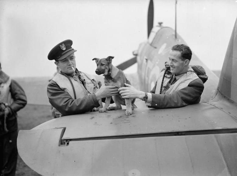 Jan Zumbach jako pilot Dywizjonu 303. Na swoim samolocie namalował kaczora Donalda