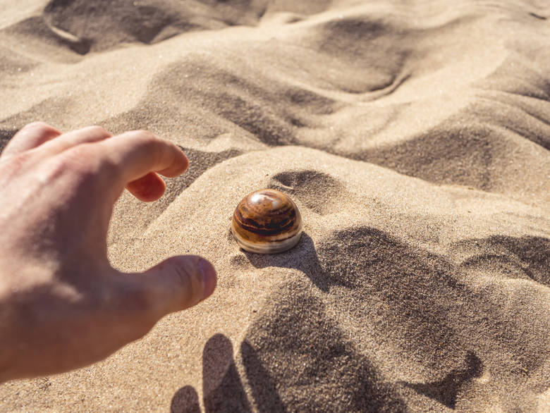 Jeśli znajdziesz to na plaży, zostaniesz milionerem. Te skarby natury są warte majątek. Przypadkowi znalazcy pławią się dziś w luksusach