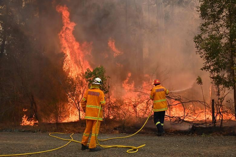 Strażacy próbują ochronić przed ogniem z pożaru buszu dom w Taree, 350 km na północ od Sydney. 9 listopada 2019 r.