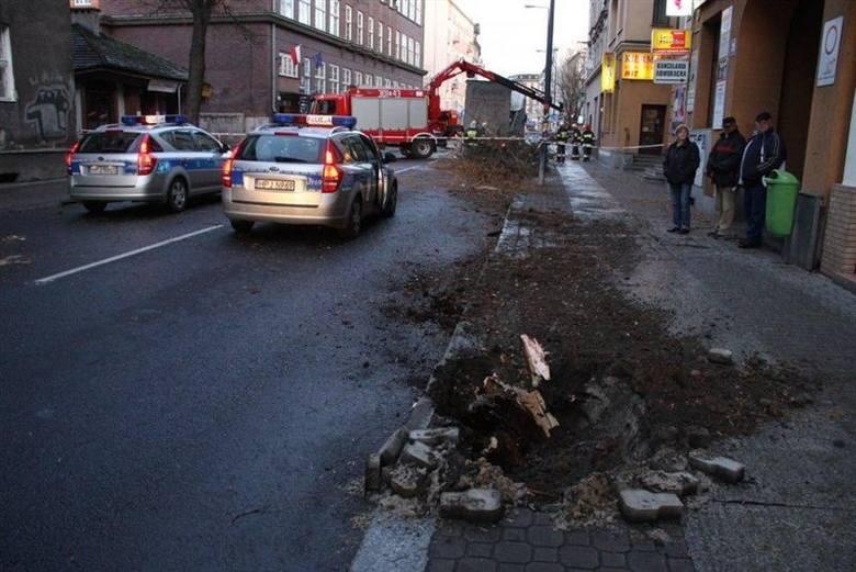 Uderzenie było tak silne, że wyrwane drzewo DAF ciągnął jeszcze kilkanaście metrów.