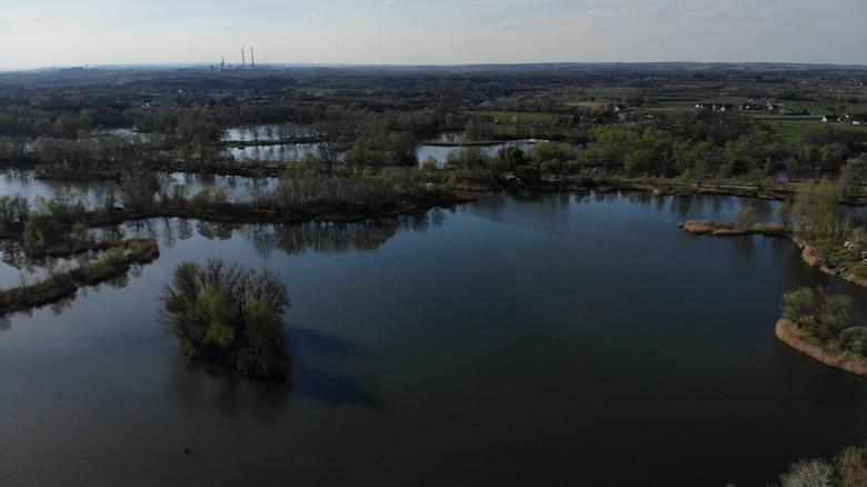 Przylasek Rusiecki. Rekreacyjna perła wschodniej części Krakowa będzie hitem tego lata [ZDJĘCIA] 22.07.2021