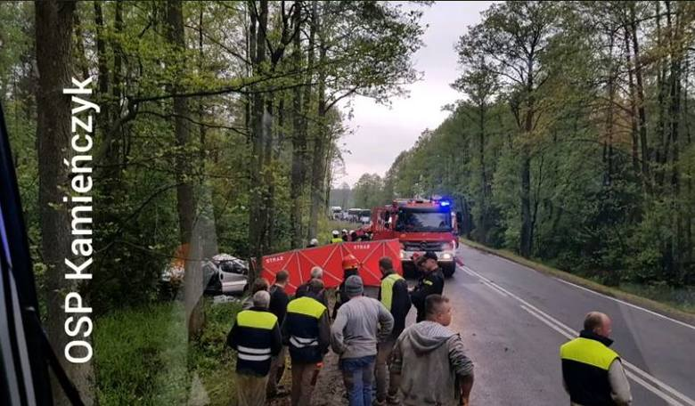 Łochów - Wyszków: Wypadek na DK62 w miejscowości Kamieńczyk, pow. wyszkowski. Tragiczny wypadek busa pod Wyszkowem