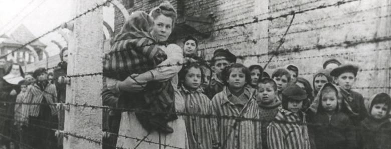 Ogółem do Auschwitz deportowanych zostało co najmniej 232 tys. dzieci, z których ok. 216 tys. stanowili Żydzi, 11 tys. Romowie, ok. 3 tys. Polacy, ponad