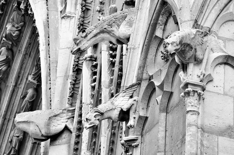 Charakterystycznym elementem architektonicznym dla katedr gotyckich są rzeźby gargulców (rzygaczy).  Makabryczne stwory na ogół służą do odprowadzania