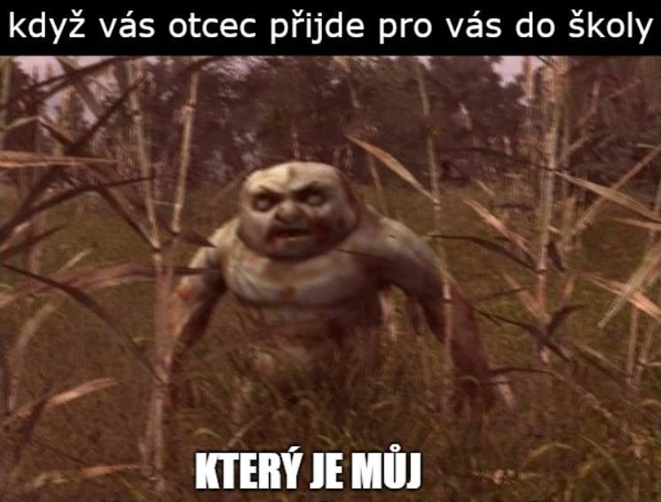 Czeskie memy to coś, co kochacie. Rozchmurzmy się! Nasi sąsiedzi mają wyborny humor. Zobacz najlepsze czeskie memy [23.03.2020]