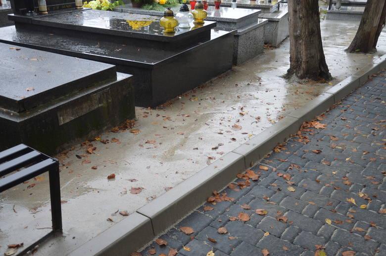 Bochnia. Po co zabetonowali drzewa na cmentarzu?