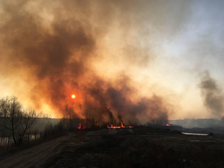 Tragiczne skutki wypalania traw. 80-latek znaleziony martwy w Sokołowie Małopolskim, to pierwsza ofiara śmiertelna na Podkarpaciu