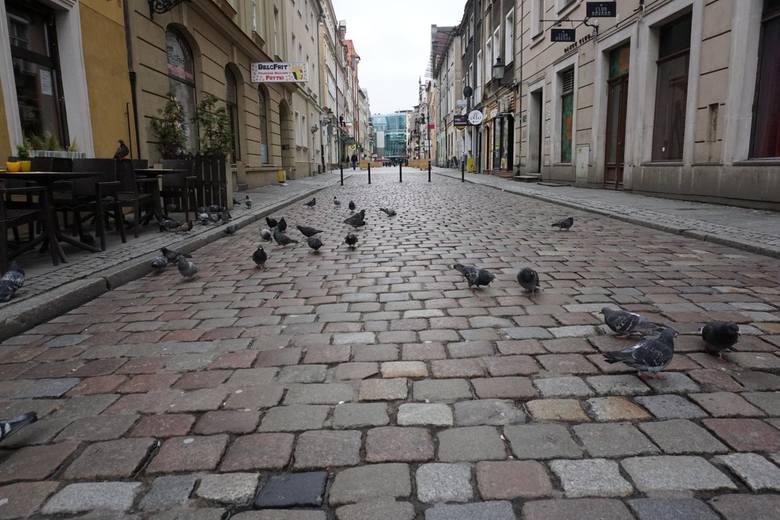 Na brak miejsc zielonych mogą też narzekać mieszkańcy Starego Miasta, gdzie mimo powstających skwerów zieleni, brakuje starych zadrzewień. Zobacz, w