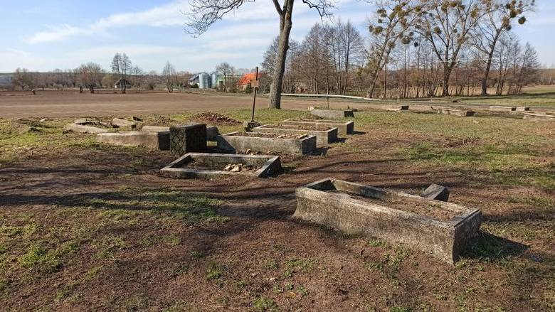Cmentarz menonicki w Kosowie jest nie do poznania!