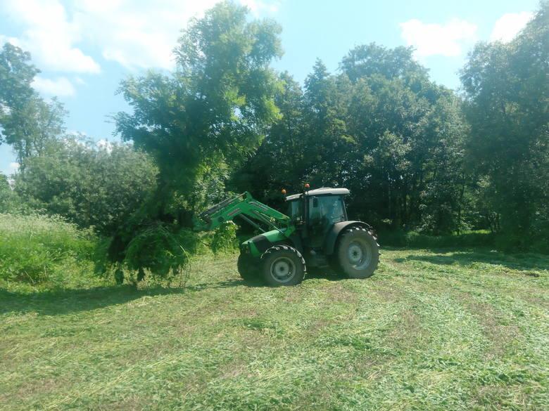 """Firma """"DUDEK"""" - pozyskiwanie biomasy drzewnej z gruntów rolnych oraz leśnych"""