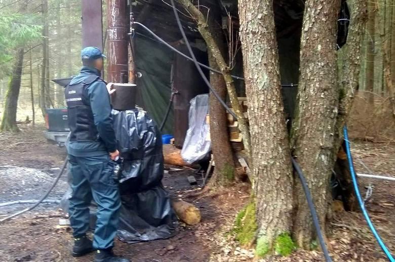 Funkcjonariusze Krajowej Administracji Skarbowej z Białegostoku zlikwidowali bimbrownię, która działała w lesie w okolicach Królowego Mostu w powiecie