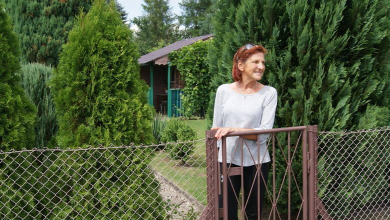 Działka Jadwigi Frączkiewicz