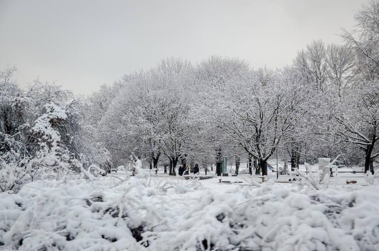 Prognoza pogody na święta Bożego Narodzenia. Zobacz, co czeka nas