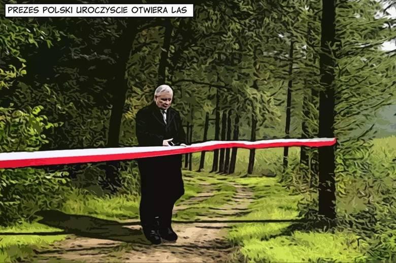 Uroczyste otwarcie drzwi do lasu MEMY. Lasy i parki otwarte - 20.04. - to dzień luzowania rządowych obostrzeń. Czekają nas tłumy w lasach?Zobacz kolejne