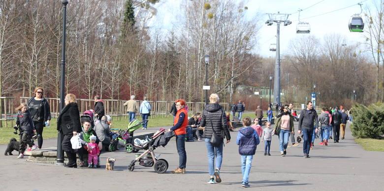 Park Śląski jest w niedzielę oblegany. Nic dziwnego, bo to pierwszy tak gorący weekend tego roku.