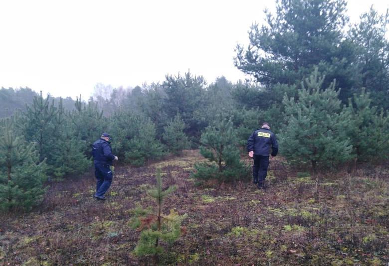 Policjanci przeszukiwali okolice Grążaw za zaginionym 77-letnim mieszkańcem Brodnicy