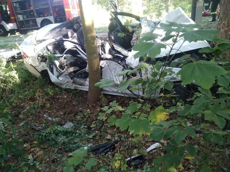 Do wypadku doszło w niedzielę, 22 września, przed godziną 15. Na drodze wojewódzkiej nr 134 między Ośnem a Radachowem samochód zjechał na pobocze i uderzył