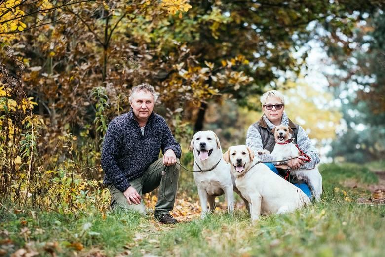 Przemysław i Małgorzata Osuch profesjonalną hodowlą zajmują się od 20 lat. Mieszkają wraz z labradorami, pieskami chichuachua i Tofikiem - terrierem