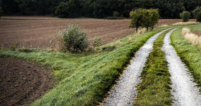 Agencja Nieruchomości Rolnych wznawia przetargi na dzierżawę