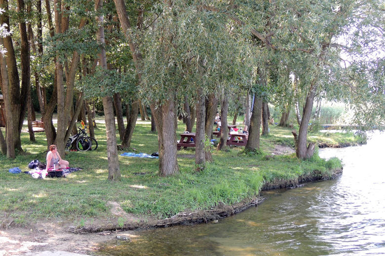 Równie często wybieranym miejscem (podobnie jak Kamionki czy Mirakowo) jest położona pod Toruniem miejscowość Zalesie